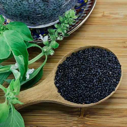 Sabja Falooda Seeds (சப்ஜா விதை)