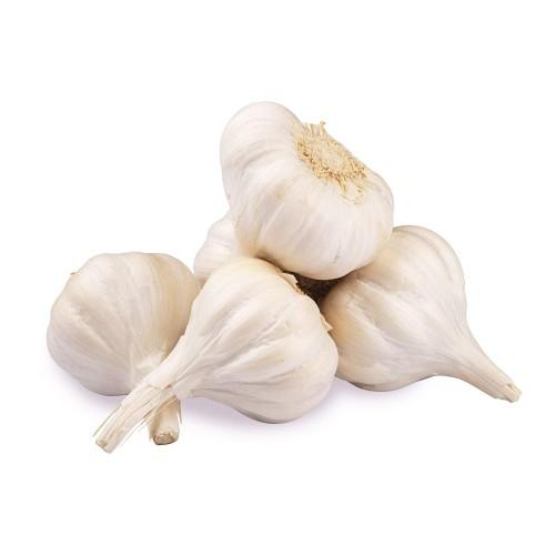 Garlic Poondu (பூண்டு)