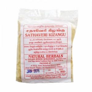 Shatavari Thaneervittan Kizhangu Powder Churna 50g